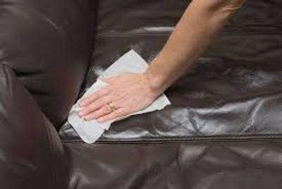 Cleaning Leather Sofa Eden Park